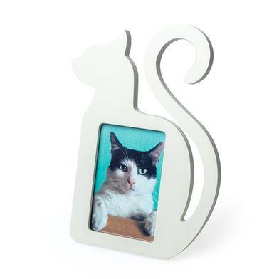 Marco para fotos gato
